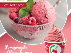 branded cup filled with pomegranate raspberry sorbet